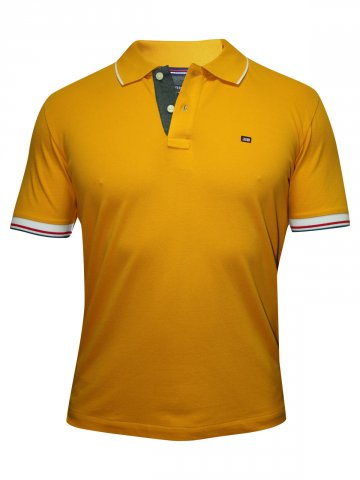 https://static4.cilory.com/144201-thickbox_default/arrow-yellow-polo-t-shirt.jpg