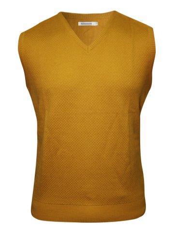 https://static8.cilory.com/148327-thickbox_default/peter-england-mustard-v-neck-sweater.jpg