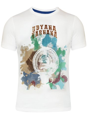 https://static.cilory.com/176941-thickbox_default/turtle-white-round-neck-t-shirt.jpg