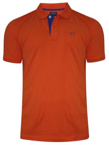 Arrow Wild Orange Polo T-Shirt at cilory