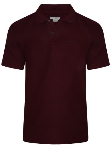 https://static6.cilory.com/285777-thickbox_default/peter-england-maroon-pocket-polo-t-shirt.jpg