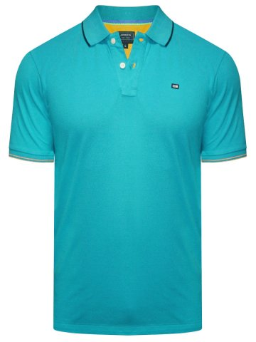 Arrow Light Green Polo T-Shirt at cilory