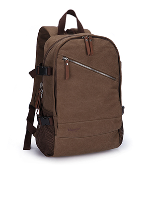 Buy Backpacks/Laptop Bags